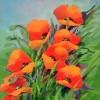 Posse of Poppies
